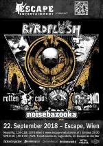 Birdflesh, Rotten Cold, Nuclear Monstrosity, Griszmo, Noisebazooka